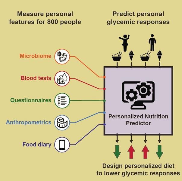 Personalised nutrition predictor? Maybe soon!